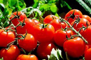 tomaten keto dieet